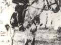 Никитинский Василий Александрович