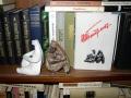 Книжная полка в кабинете  и любимые фигурки «палеолитический мыслитель» и «палеолитическая Венера».