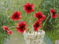 """""""Красные цветы"""""""