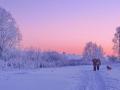 """""""Зимняя дорога перед закатом"""""""