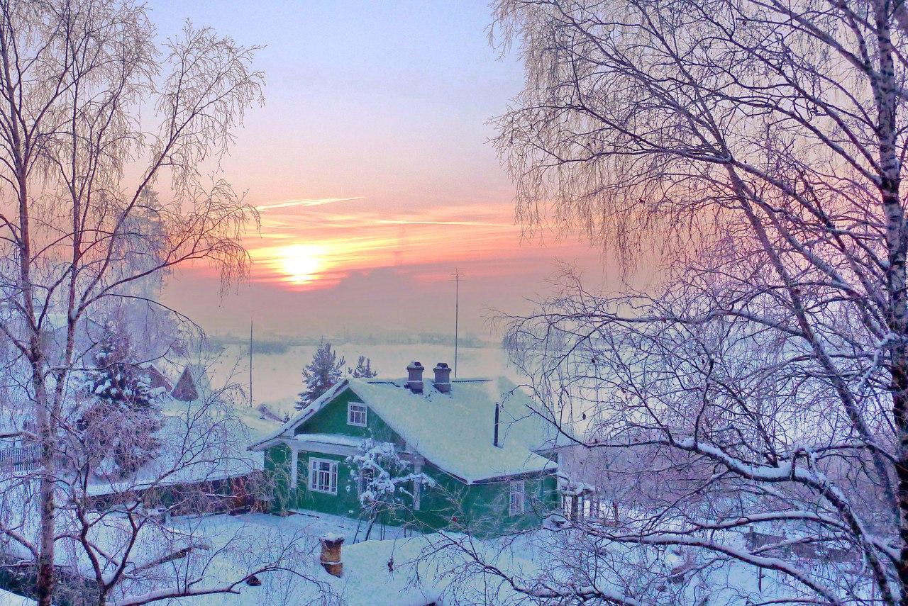 Библиотека зимних чудес2